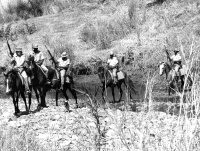 horse troop mt darwin 10