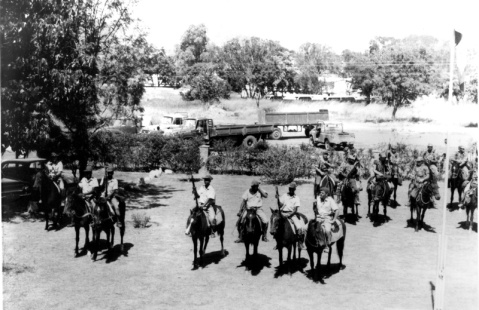 horse troop mt darwin 8a